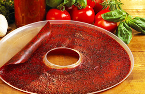Dehydrator recipes the urban homemaker best dehydrator recipes forumfinder Choice Image